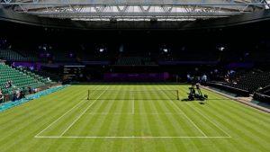 زمین چمن مخصوص تنیس